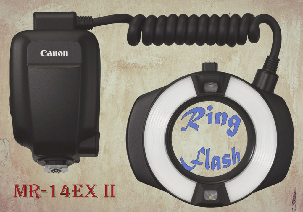 Canon macro ring flash MR-14EX II – product review
